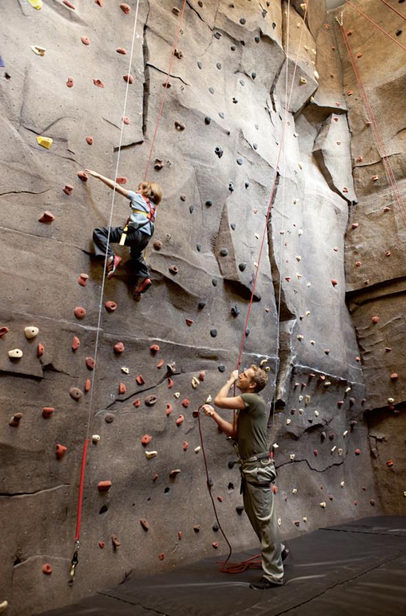 aldyn, climbing wall.png
