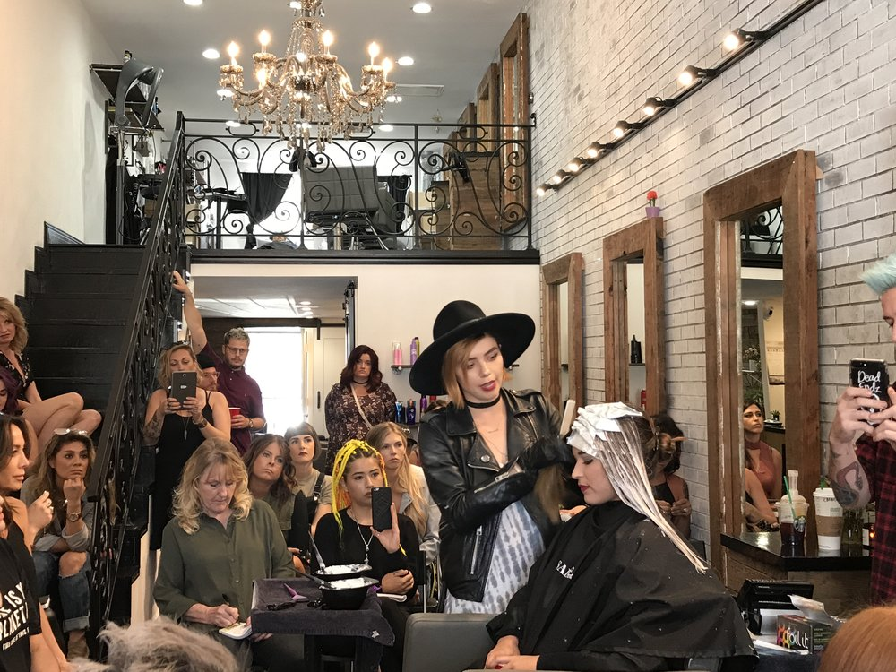 Look and learn color class at the LARISA LOVE SALON