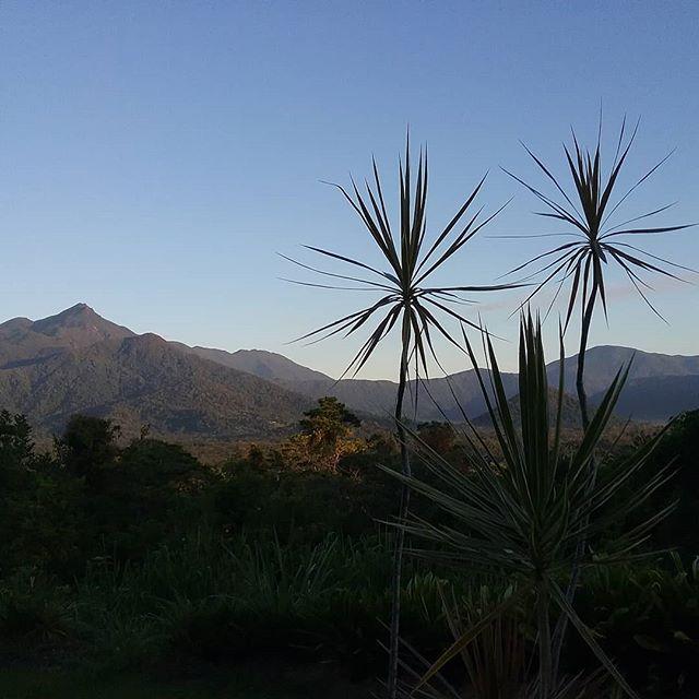 Beautiful morning at #wompooecoretreat #thorntons peak # coolness #rainforest # Daintree