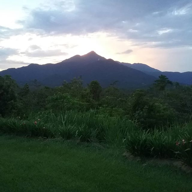 #ThorntonPeak#sunsets#Wompooecoretreat#Rainforest#Daintree