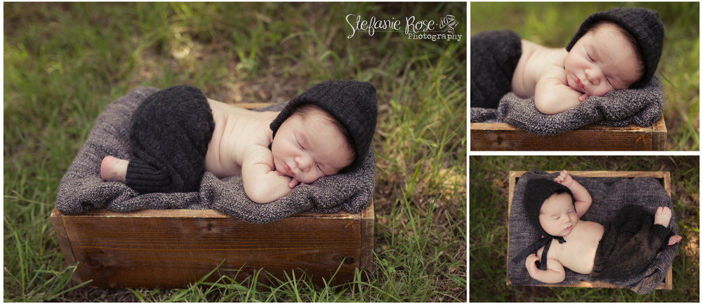 Although mom and dad weren't quite sure how he would do for his session, unsure if he would fuss or stay awake; he just blessed us all by sleeping quite contently in the warm outdoors.