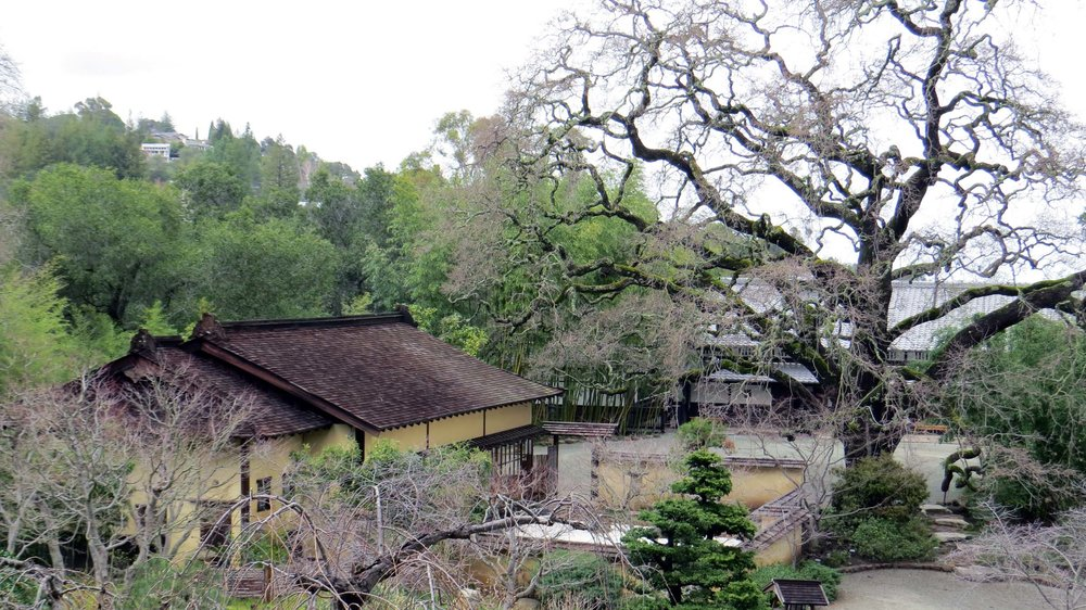 The Lower House (left) at Hakone Gardens