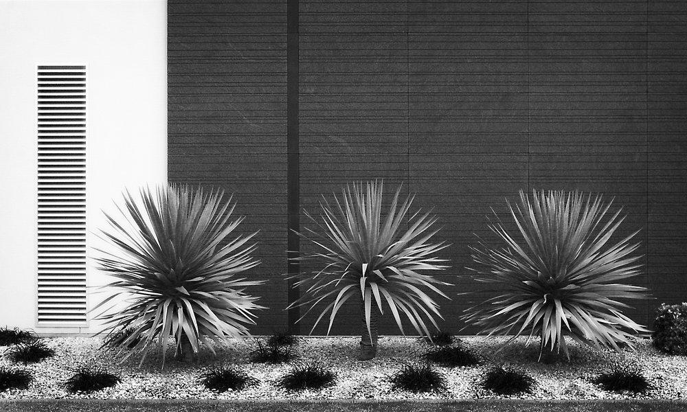 Landscape-40.jpg