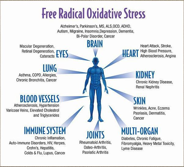 free_radical_oxidative_stress.jpg