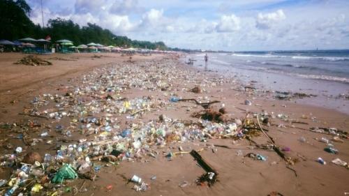 plastic+pollution.jpg