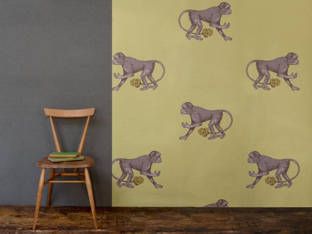Avenida_Home_Monkey_wallpaper.jpg