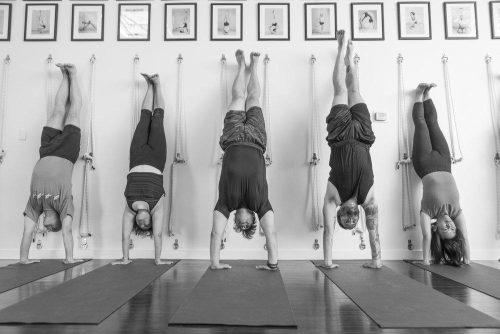 bw-4495 handstands.jpg
