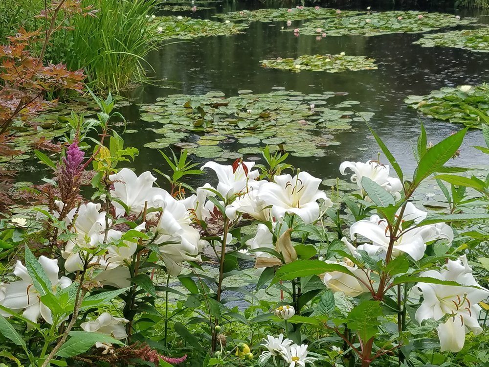 Monet's water garden, Giverny, France