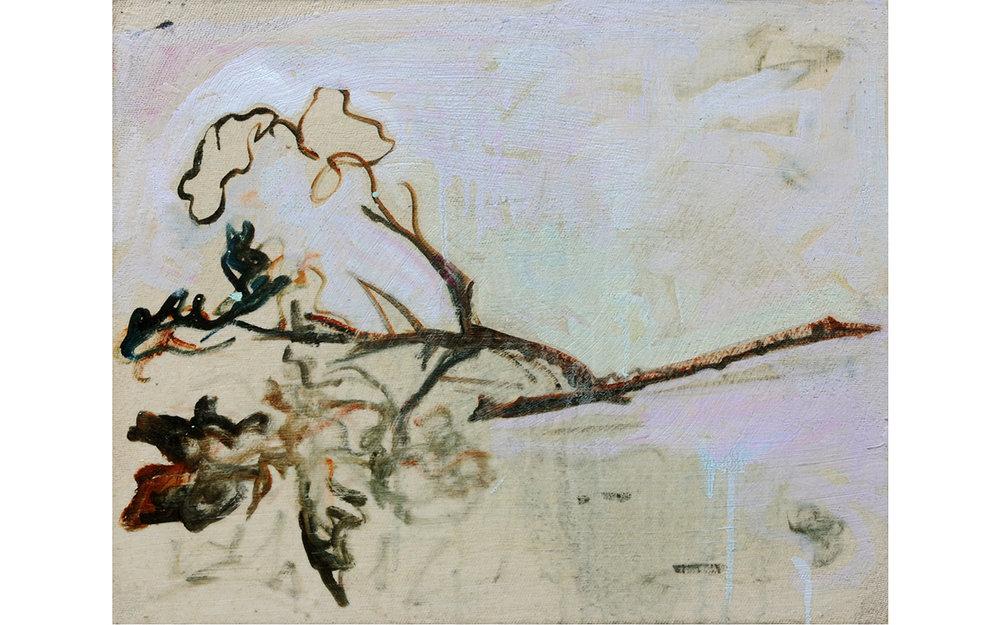 Still Life: Fallen Oak Sprig