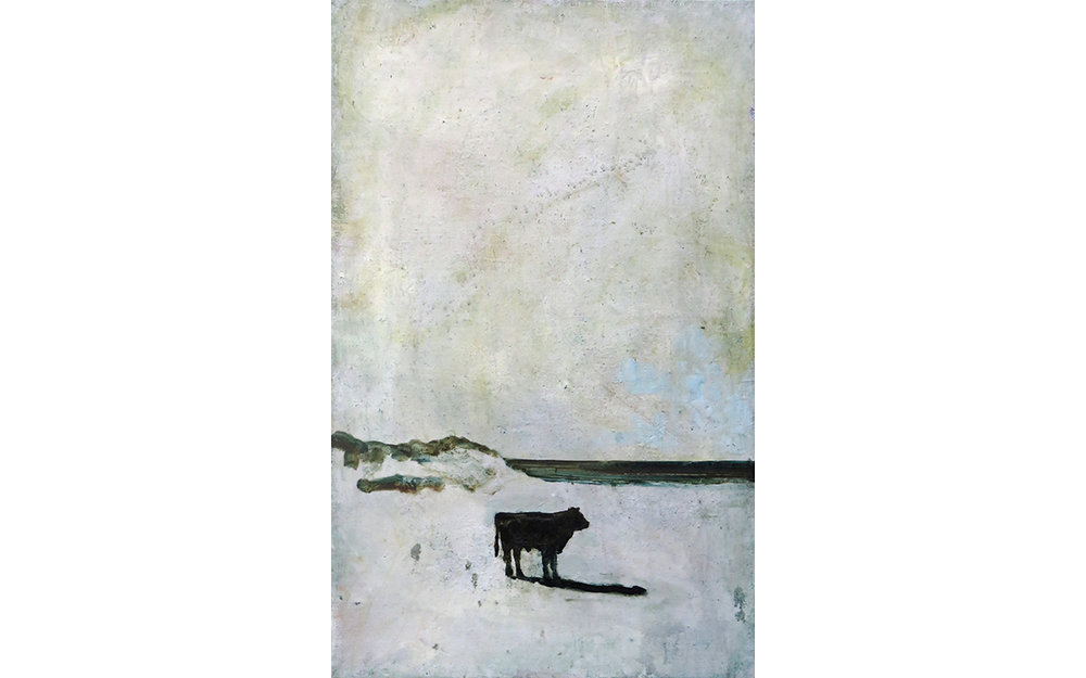 Cow on a Beach