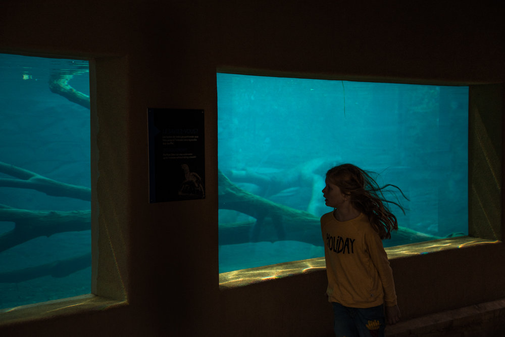 day at the eco museum21.jpg