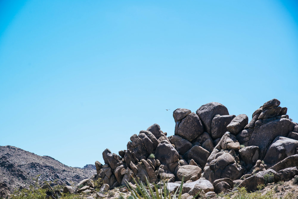 The rock formations in Joshua Tree, California are incredible.