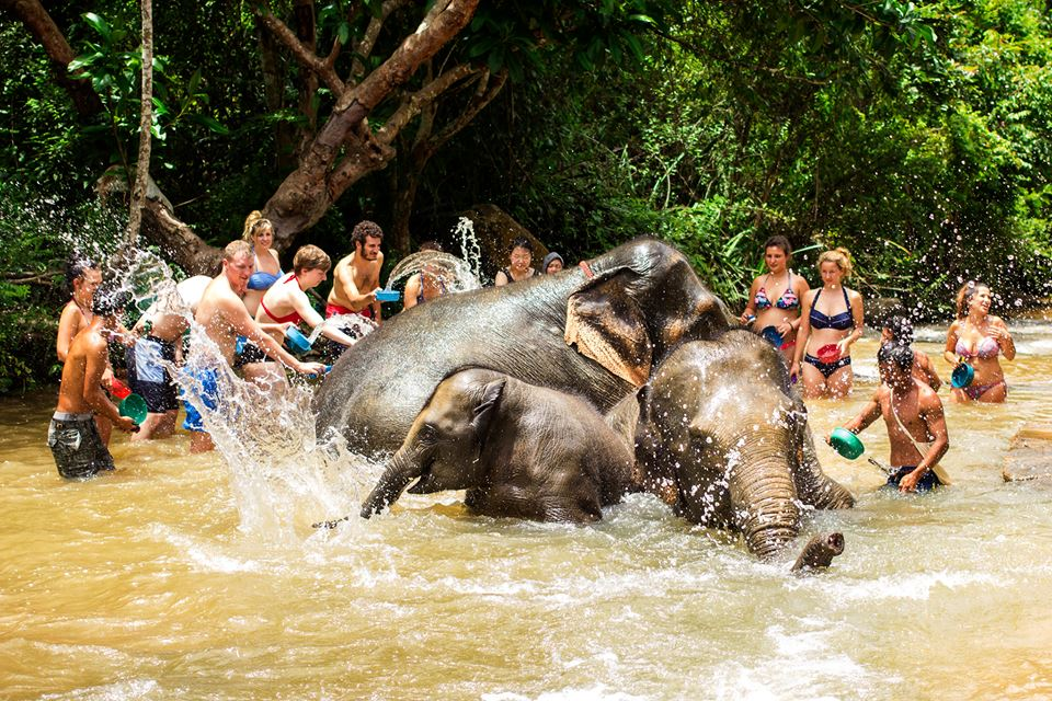 Bathing elephants is so much fun! Photo Credit:  The Elephant Jungle Sanctuary