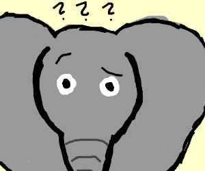 confused elephant.png