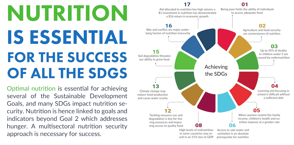 Action Against Hunger/Scaling Up Nutrition (SUN) Civil Society Network. (2017.)    Implementation of the SDGs at the National Level: How to Advocate for Nutrition-Related Targets and Indicators   . SUN Movement: Geneva, Switzerland.