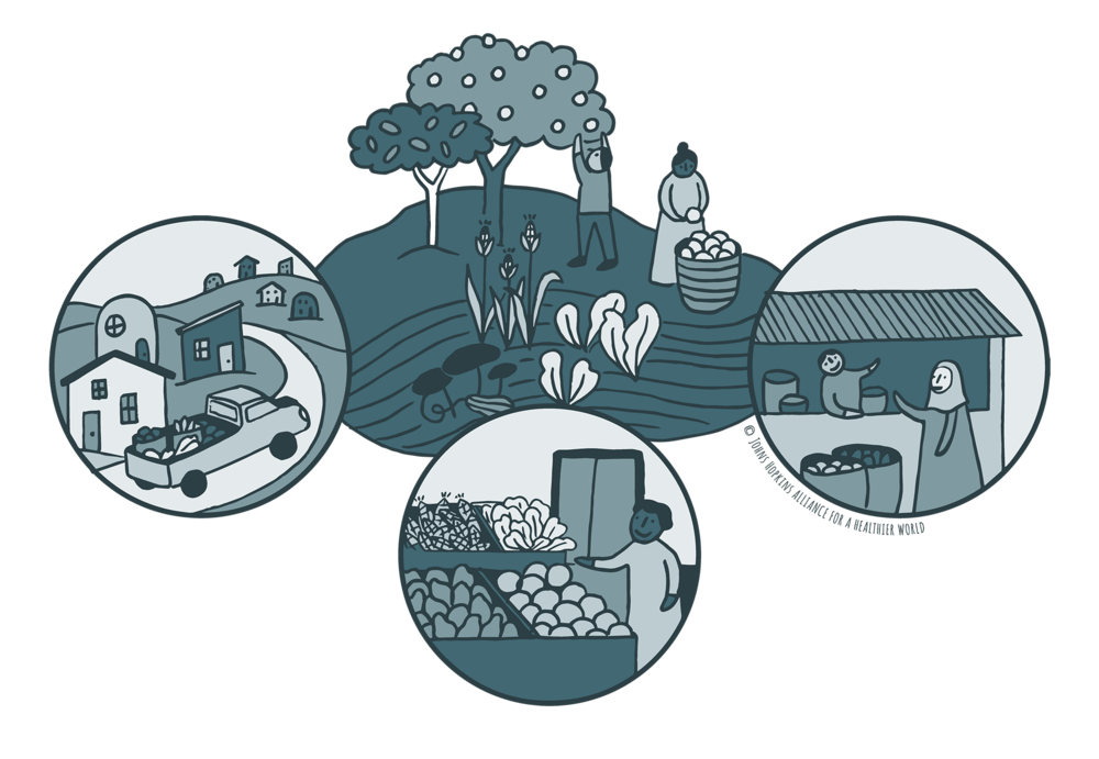 AHW's Food & Nutrition Security icon.© Alliance for a Healthier World