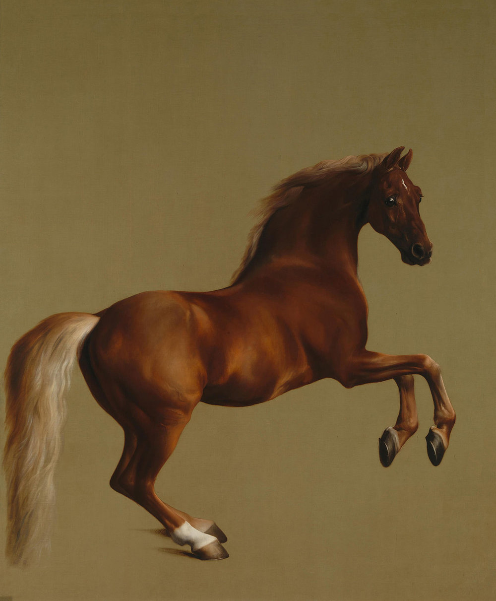Whistlejacket    (c. 1762) by George Stubbs. The National Gallery (London, UK).