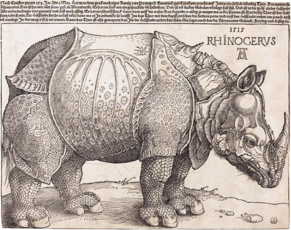 Dürer's Rhinoceros  (1515) by Albrecht Dürer.  (There are copies of this woodcut in museums around the world.)