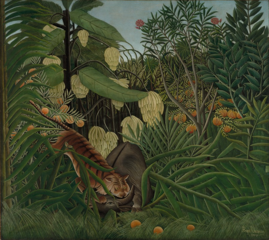 Fight Between a Tiger and a Buffalo  (1908) by Henri Rousseau. The Cleveland Museum of Art (Cleveland, OH).