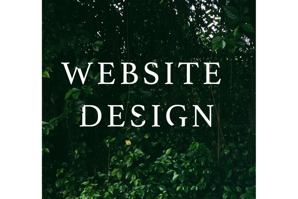 WEBSITE DESIGN FINAL GRAPHIC.png