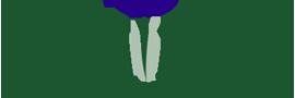 juniper-header-logo.png