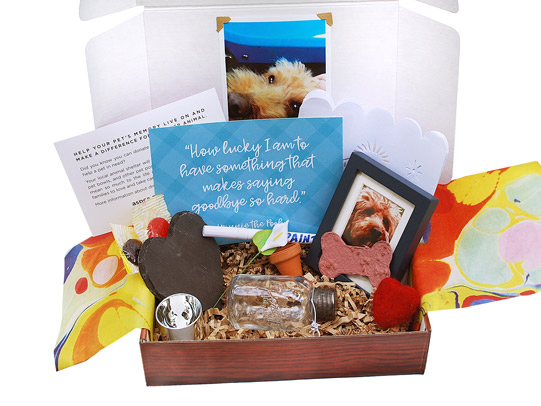 Pet Loss BoxThe loss of a pet can be very difficult, for kids, guardians and friends. This box contains a special keepsake jar, a slate heart with paint pen, forget-me-not seeds and much more.  - $34.95