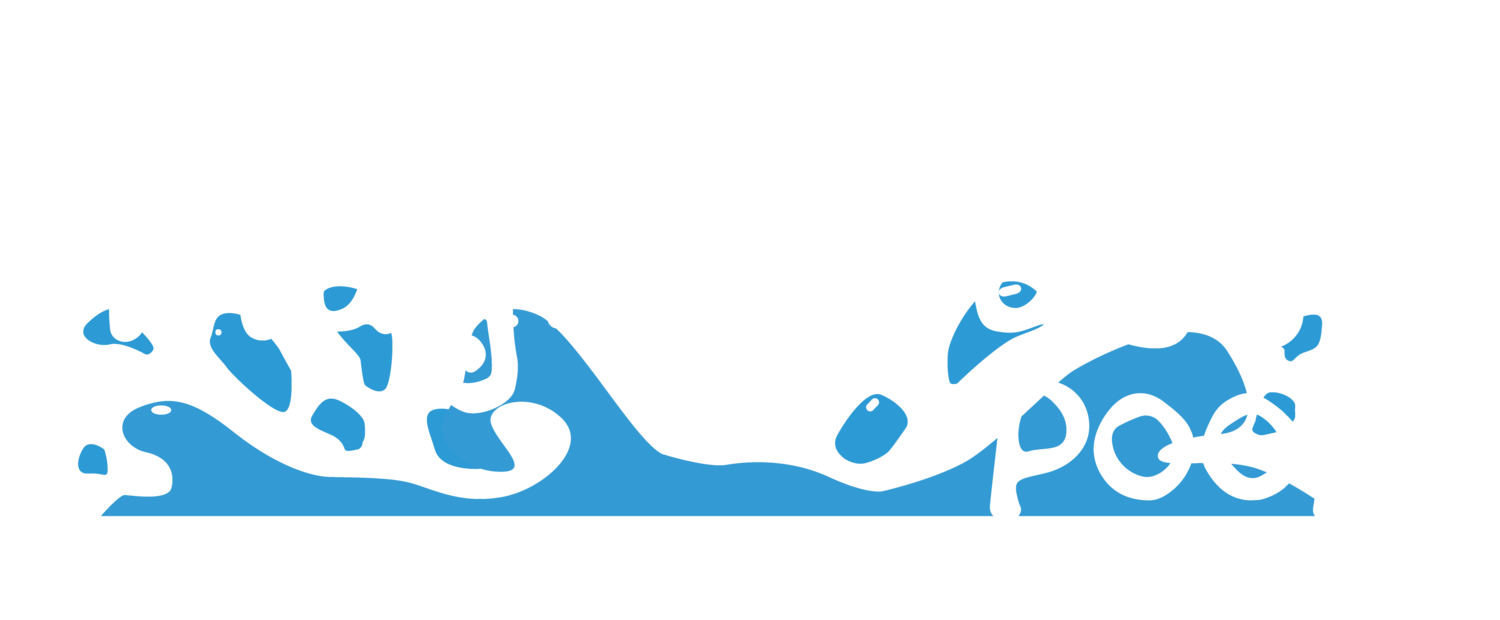 Magic Matt's Pools