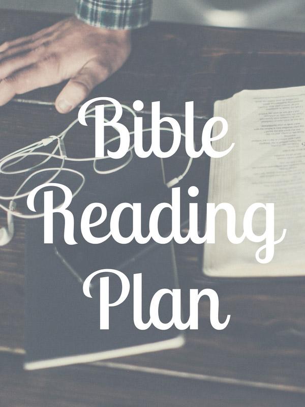 myfw_BiblePlan.jpg