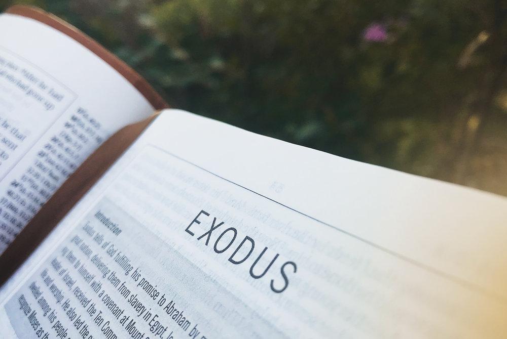 exodus1.jpg