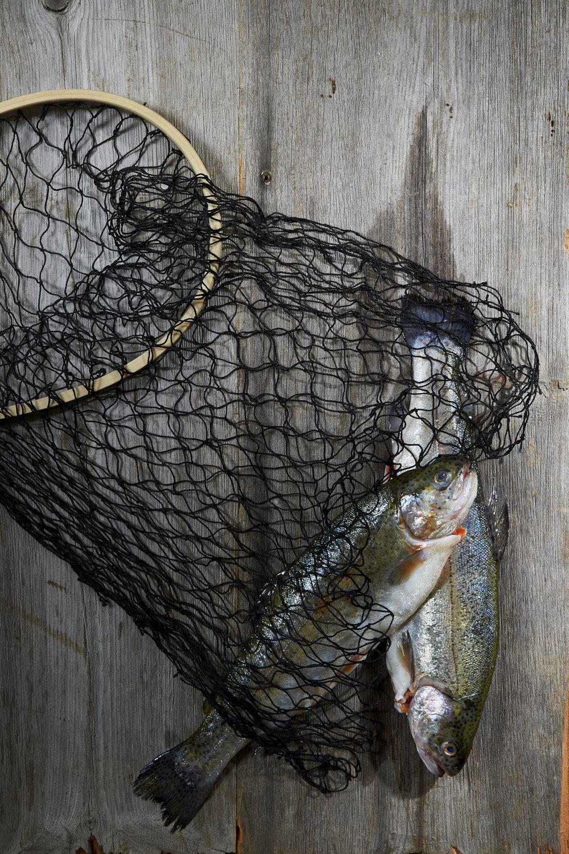 Fresh Catch: Branzino
