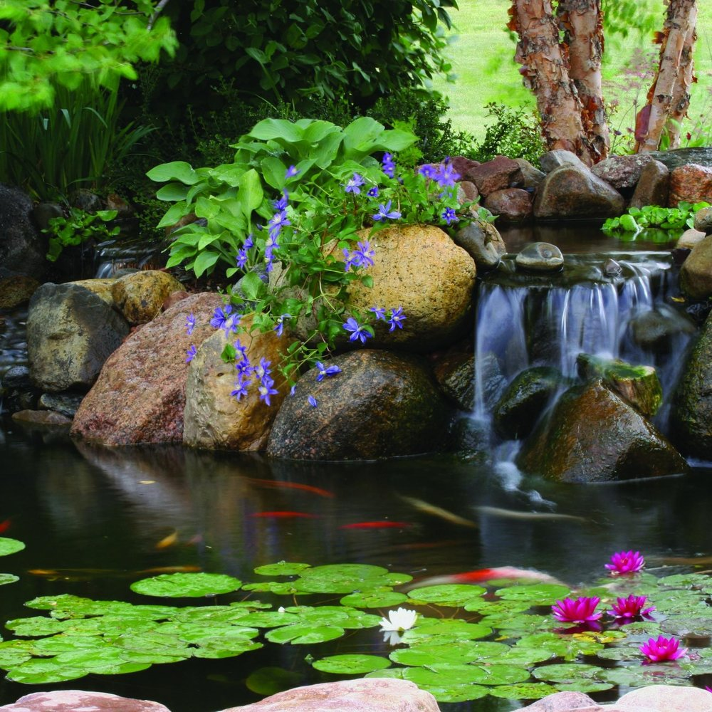 Professional pond water feature design in Harrisburg Dauphin County PA