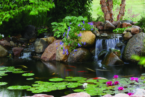 Professional landscape design information in Harrisburg, Dauphin ...