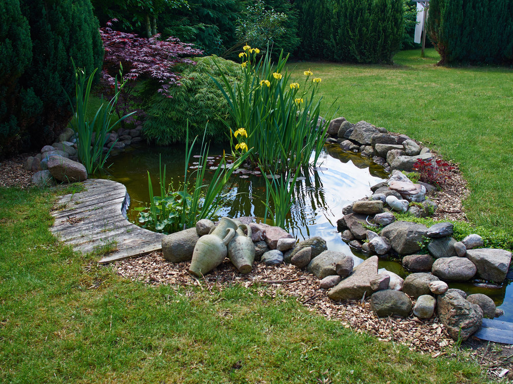 Building a Rain Garden in Lancaster, PA? Get Everything You Need from Our Garden Supply Store