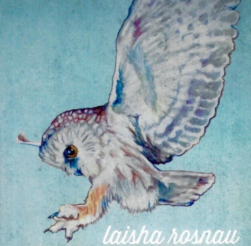 About Laisha Rosnau