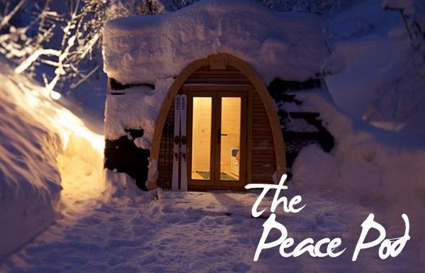 PEACE POD - SKI IN - Close up.jpg