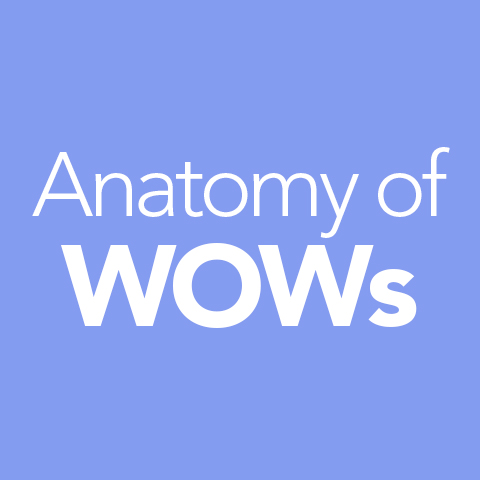 99WOWs__TheBook_AnatomyOfWOWs.jpg
