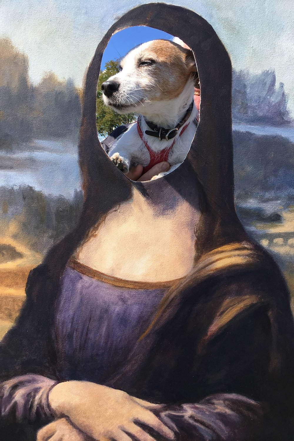 doggylisa.jpg