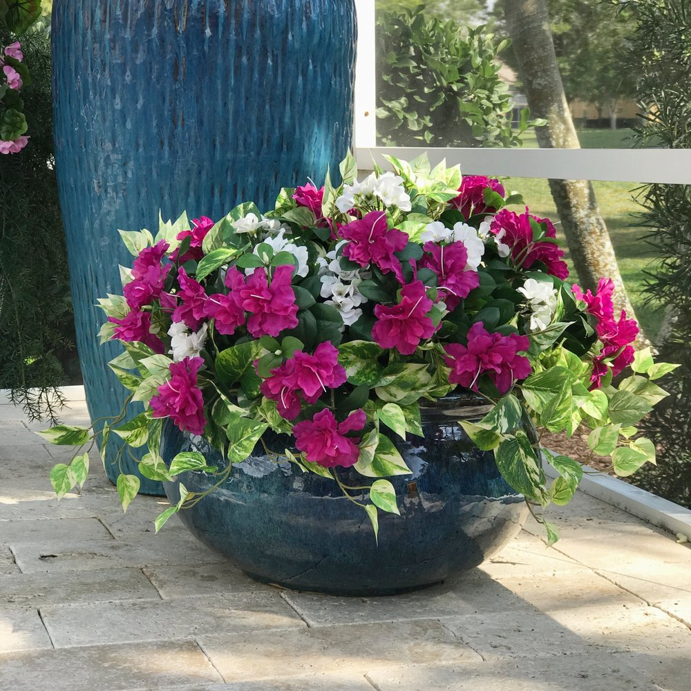 POOLSIDE PLANTING OF POTHOS AND AZALEA