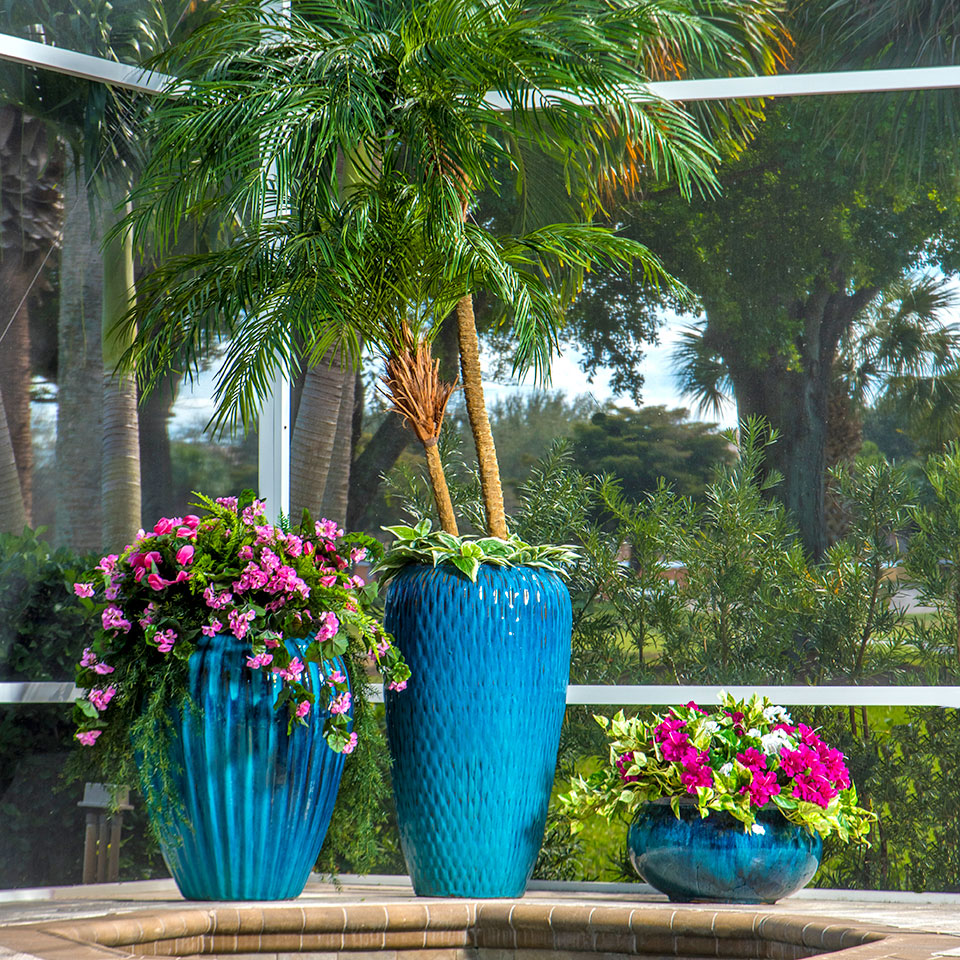 POOL PLANTING FOR A FLORIDA LANAI