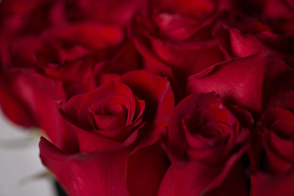 valentine's day - Mellano Seasonal Offerings
