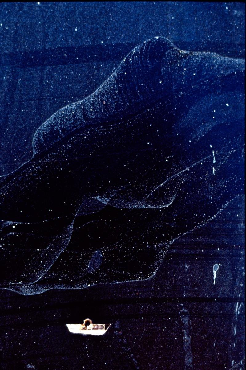 32 Pokfulam, H.K. 2004.jpg