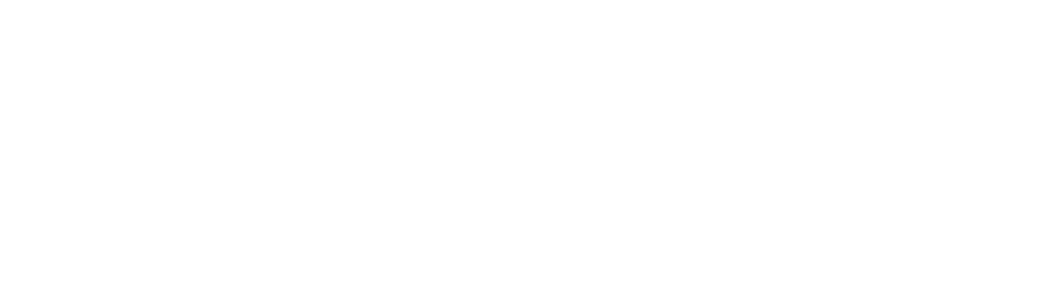 The Smith Team