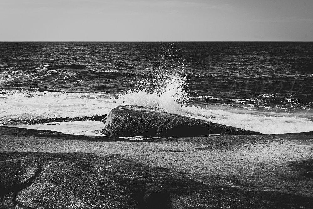 untitled shoot-073-3.jpg