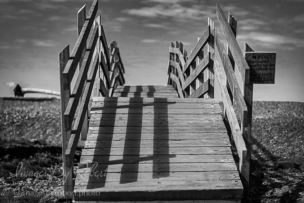 untitled shoot-296-2.jpg