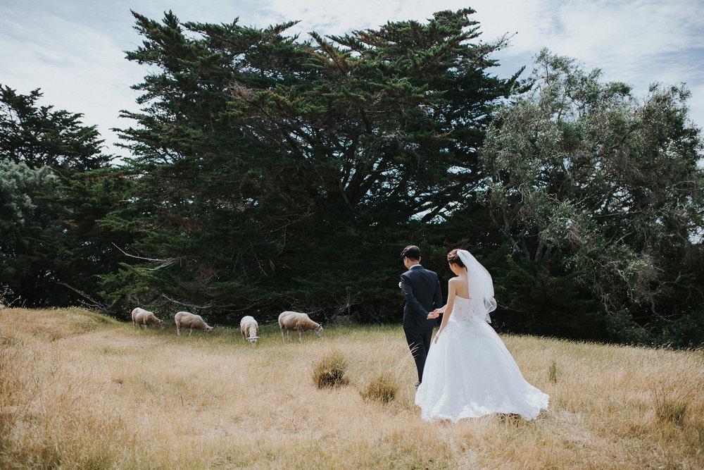 Mantells Auckland wedding photographer - Eri-Jun-40.jpg