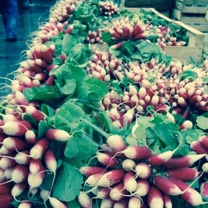 Market Table Covered in Radishes
