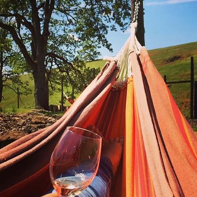 Drinking Wine in Hammock