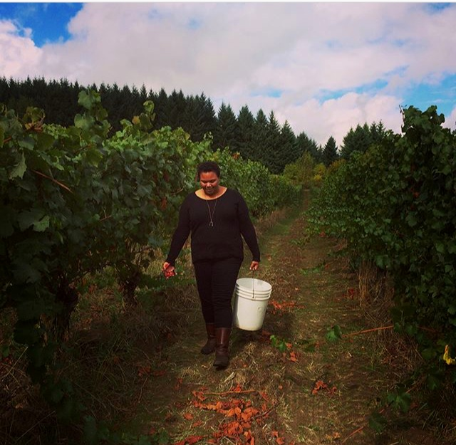 Clipping Gamay from Brick House Vineyards to be used to make sausage Lyonnaise. Photo: Savannah Mills
