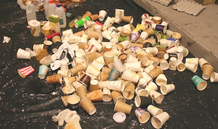 This small pile is a fraction of a typical day's used coffee cups