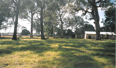 Before construction. Looking north with dairy on right.